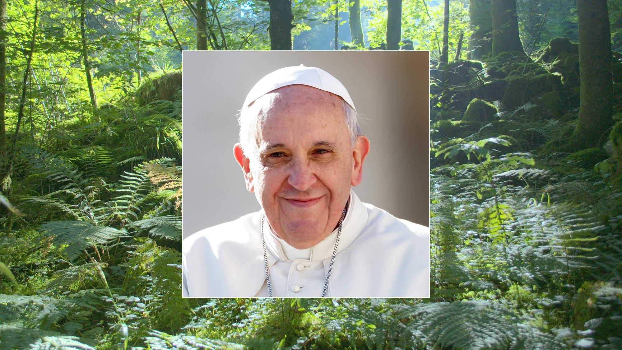 Journée mondiale de prière pour la sauvegarde de la Création