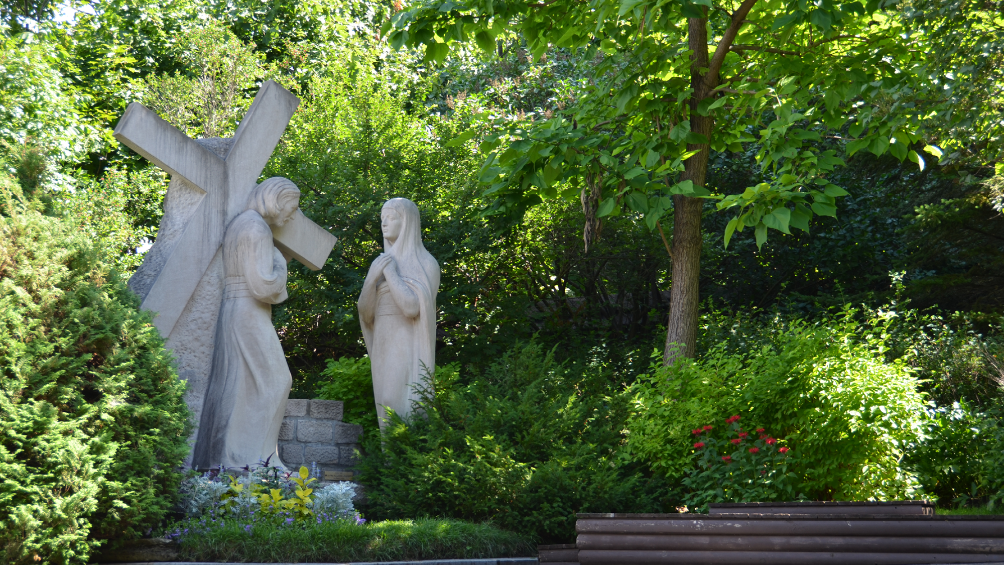 Marie, au cœur de nos souffrances